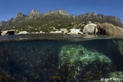 Oudekraal-snorkel_South_Africa_diving_001
